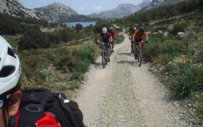 Guided tours in Mallorca