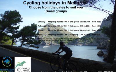 Guided cycling tours in Mallorca